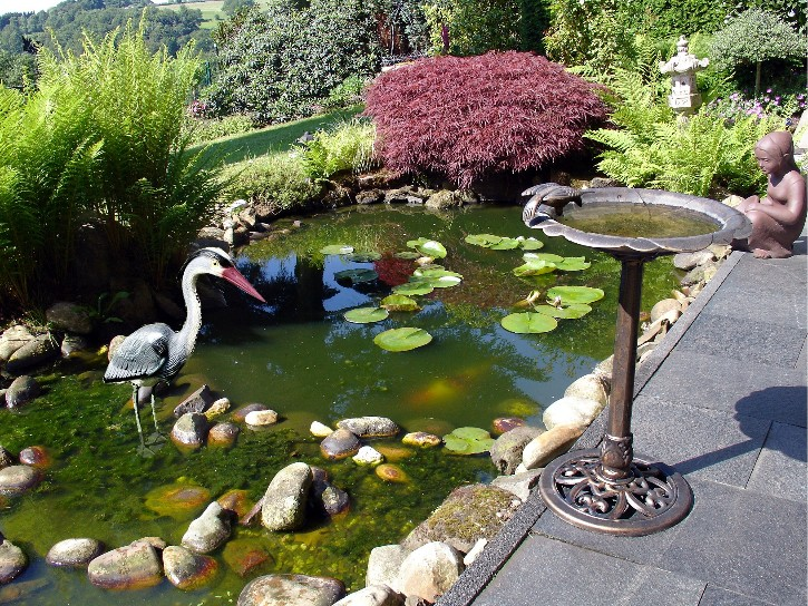 Exklusive garten dekorationen for Backyard pond animals